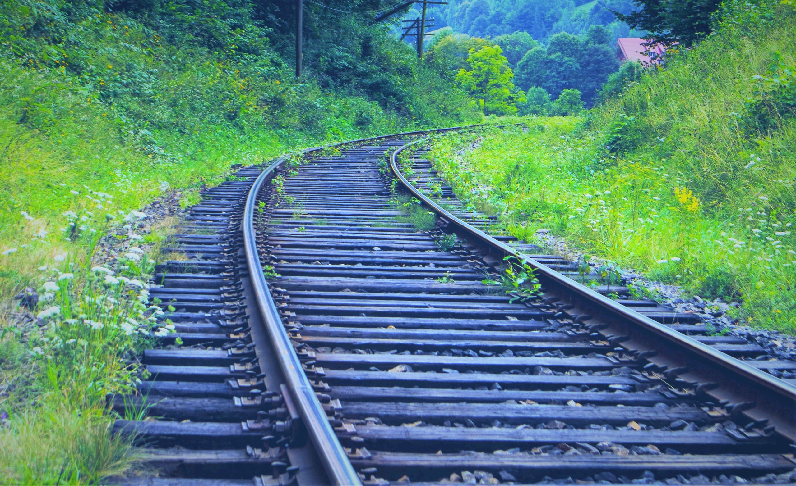 What are the Advantages of Shipping by Train?